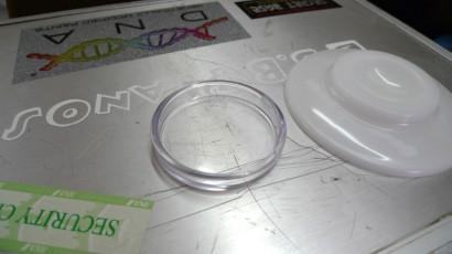 透明のインシュレーター(右は一般的なのの白いやつ)