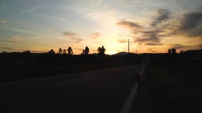 夕方 なっちゃんの散歩中